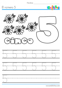 el-numero-cinco-5