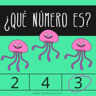 ¿Qué número es?
