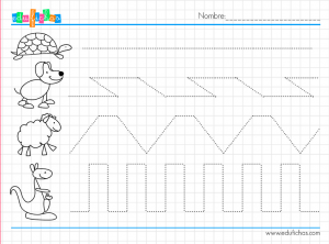 grafo animales