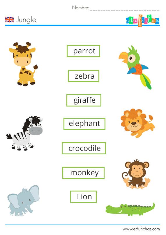 Vocabulario De La Jungla En Inglés Con Ejercicio Cuadernos Para Niños