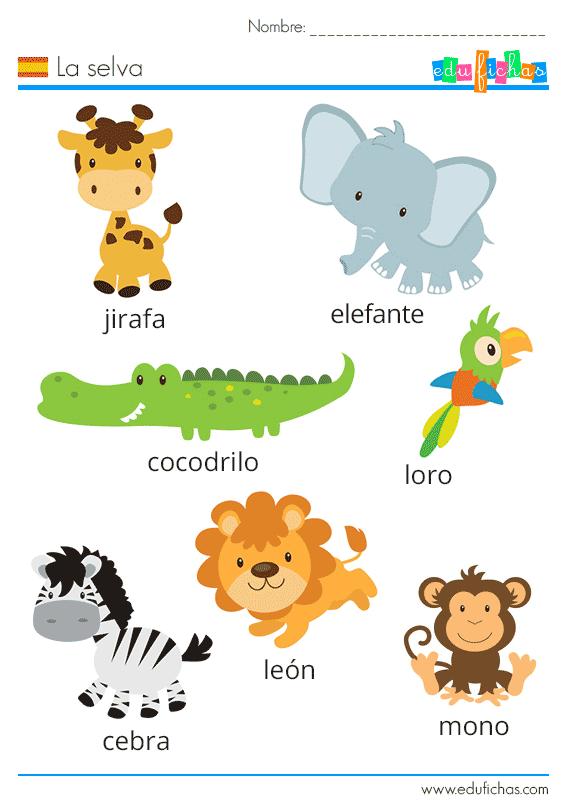 ficha de vocabulario de la selva en español para niños