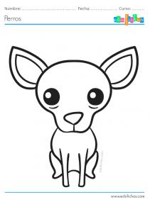 colorear chihuahua