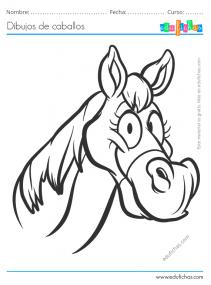 caballo cara