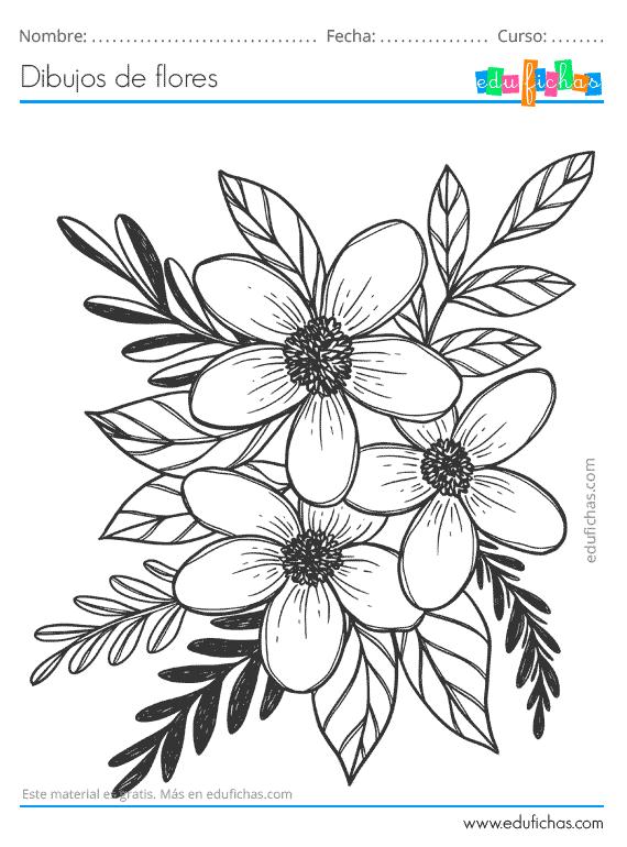 Dibujos de Flores. Descarga GRATIS Dibujos para Colorear ...