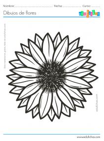 dibujos de flores fáciles