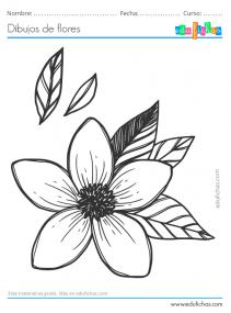 flores fáciles y bonitas