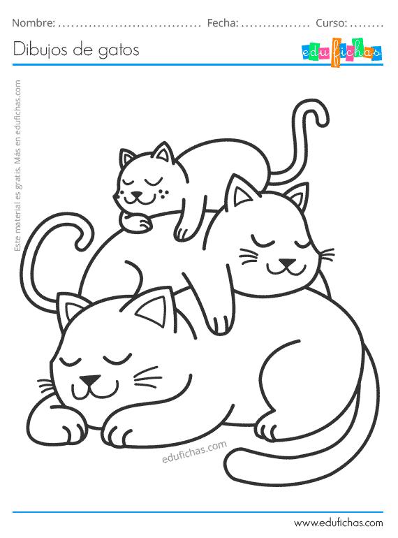 Dibujos De Gatos Para Colorear Imprimir Imagenes De Gatos Pdf Para descargar las imagenes pulsa el boton derecho de tu raton y dale a guardar imagen como te aparecera otra pantalla donde podras ponerle el nombre que quieras y pulsando guardar ya tendras tu imagen para lo que quieras. dibujos de gatos para colorear