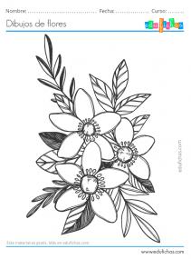 láminas de dibujos de flores