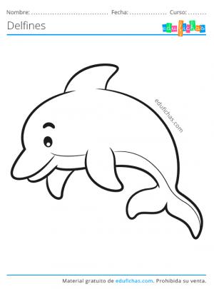 colorear un delfin