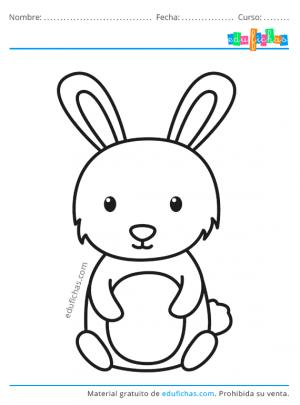 conejos para niños