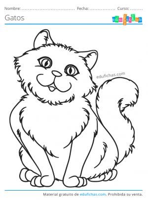 gatos para pintar