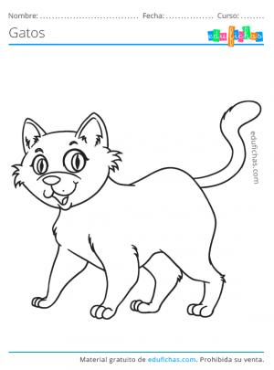imagenes de gatos felices