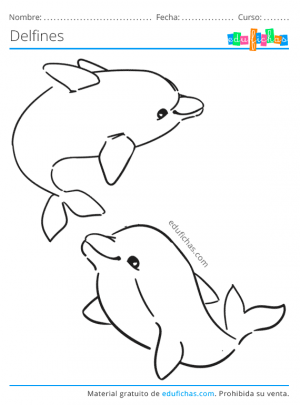 imprimir dibujos de delfines