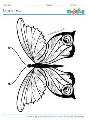 pintar mariposas