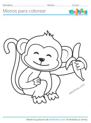 colorear monos