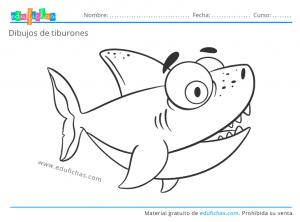 dibujo de un tiburón