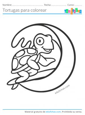 dibujos bonitos de tortugas