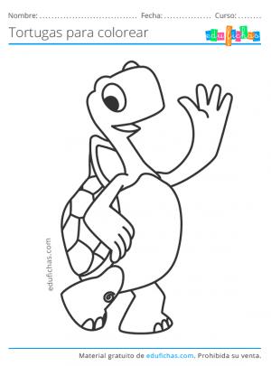 dibujos coloreables de tortugas