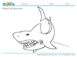 dibujos para colorear de tiburones