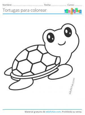dibujos de tortugas kawaii