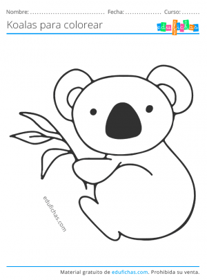 descargar dibujos de koalas para niños