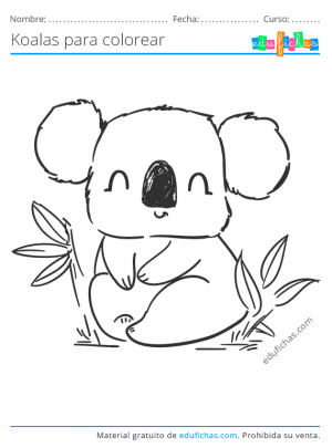 dibujos para pintar de koalas
