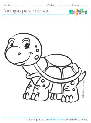 imprimir dibujos de tortugas