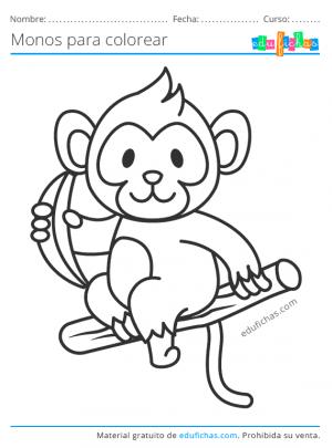 pintar dibujos de monos