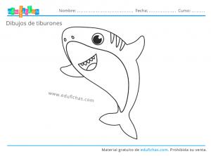 tiburones para niños