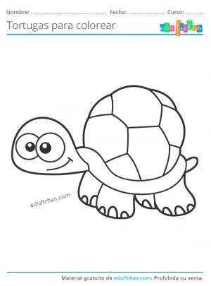 tortugas para imprimir