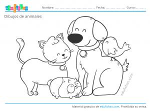colorear animales gratis