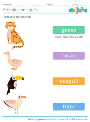 ejercicio de vocabulario de animales