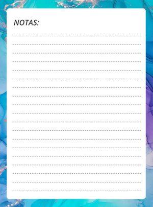 cuaderno del profesor notas